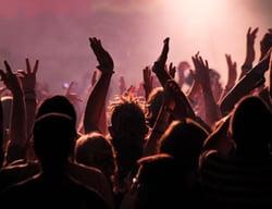 Live Concert Fans