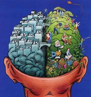 Digital+live brain